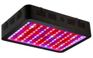 1000 Watt Led Grow Light Reviews